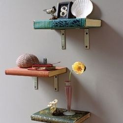 8 repurposed DIY projects that anyone and everyone can do!: Diy Ideas, Bookshelves Liter, Books Shelves Liter, Crafts Ideas, Repurposed Books, Upcycled Books, Book Shelves, Books Bookshelves, Diy Books
