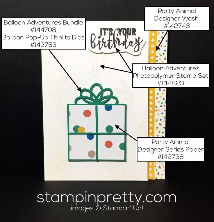 stampin-up-balloon-bundle-party-animal-dsp-birthday-card-mary-fish-stampinup