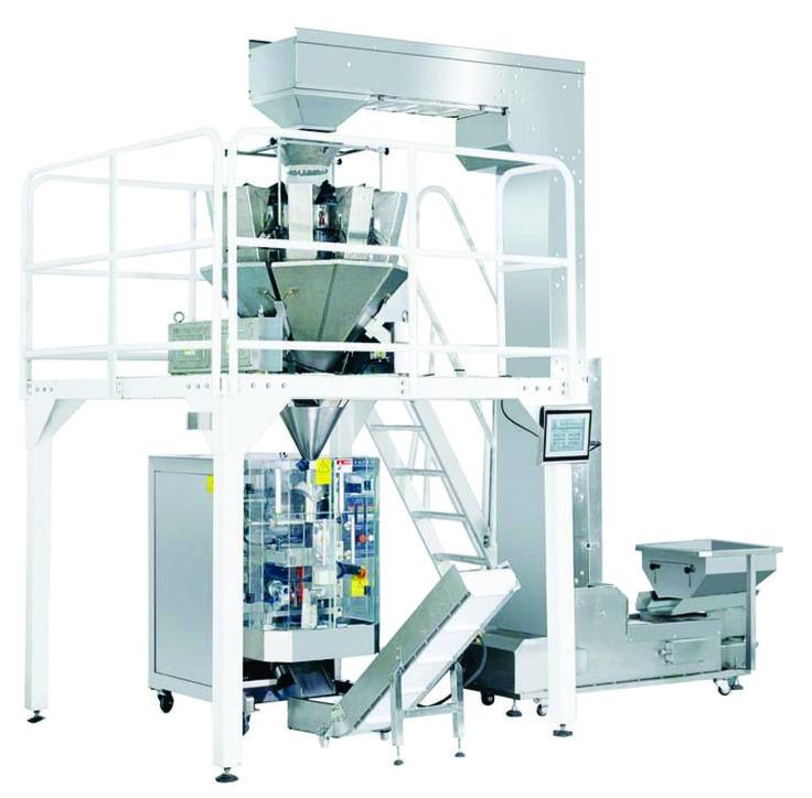 Intermittent Motion Bagging Machine