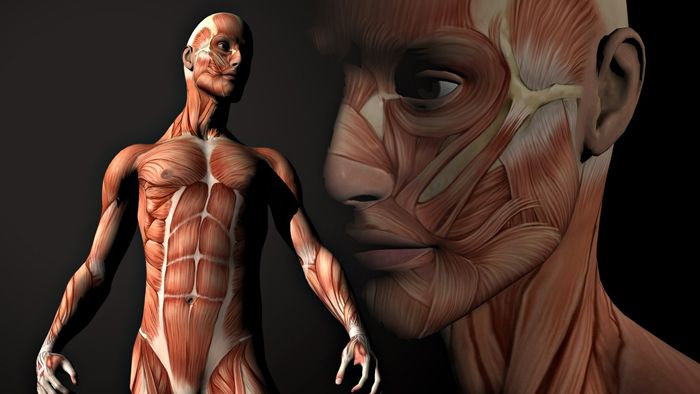 Oι ασθένειες που προκαλεί ο χαρακτήρας μας Οι αρχαίες επιστήμες της υγείας Ayurvedic δεν αποδεικνύουν μόνο την ύπαρξη των ψυχοσωματικών ασθενειών, αλλά