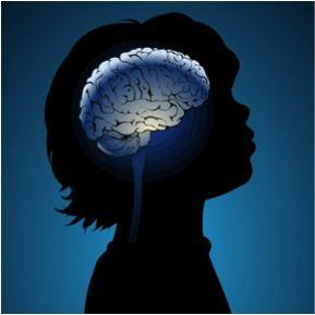 Neuroéducation : domaine de recherche qui étudie les mécanismes cérébraux liés à l'apprentissage et à l'enseignement. Discipline née en 2007, suite à un rapport de l'OCDE. Cette discipline s'inspire des recherches menées en sciences cognitives (psychologie, neurosciences, ergonomie…). Elle utilise les informations récoltées sur les fonctions cognitives liées à l'apprentissage (perception, attention, mémorisation, etc.) pour adapter les pratiques éducatives.