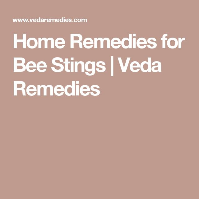 Home Remedies for Bee Stings   Veda Remedies
