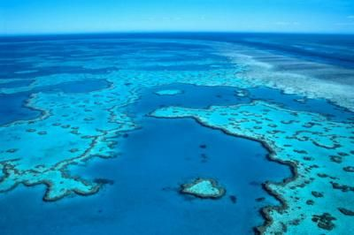Great Barrier Reef Web Quest