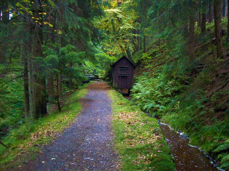 The Harz Witches' Trail (German: Harzer Hexenstieg) is a footpath, just under 100 km long, in Germany that runs from Osterode through the Harz mountains and over its highest peak, the Brocken, to Thale.