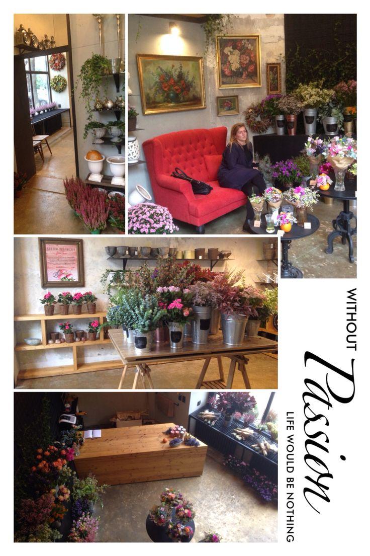 New Atelier Papaver in Bratislava