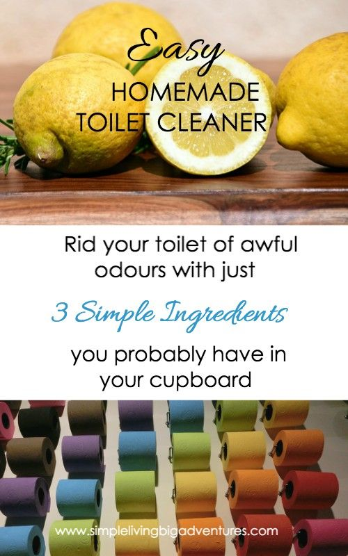 This easy DIY home toilet cleaner will make going to the bathroom a joyful experience.... no more bad odours!
