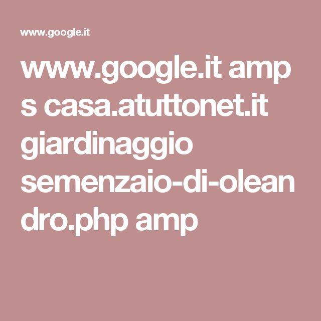 www.google.it amp s casa.atuttonet.it giardinaggio semenzaio-di-oleandro.php amp