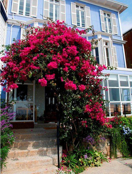 Vive la magia de Valparaíso en Zerohotel