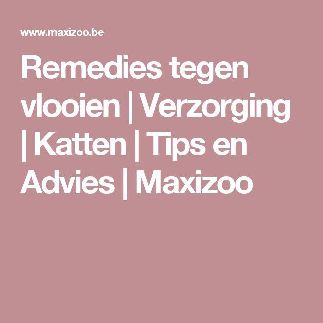 Remedies tegen vlooien | Verzorging | Katten | Tips en Advies | Maxizoo
