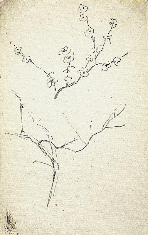 Левитан И.. Ветка цветущего дерева. Ветка. 1890, Isaac Levitan, Ramo d'albero in fiore