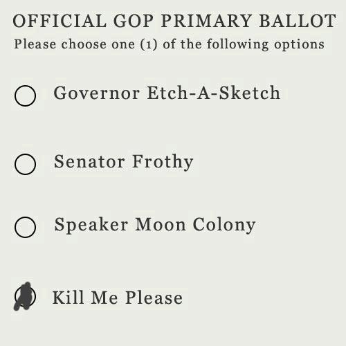 Official GOP Primary Ballot: Perry Isn T, Rick Perry, Official Gop, Primary Ballot, Gop Primary, Borrowed Moments, Choose Number, My Feelings