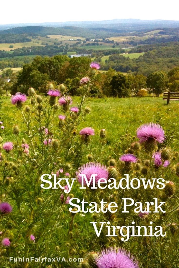 Sky Meadows State Park in Virginia, offers excellent hiking with beautiful views, plus star-gazing and family events, just an hour from Washington DC.