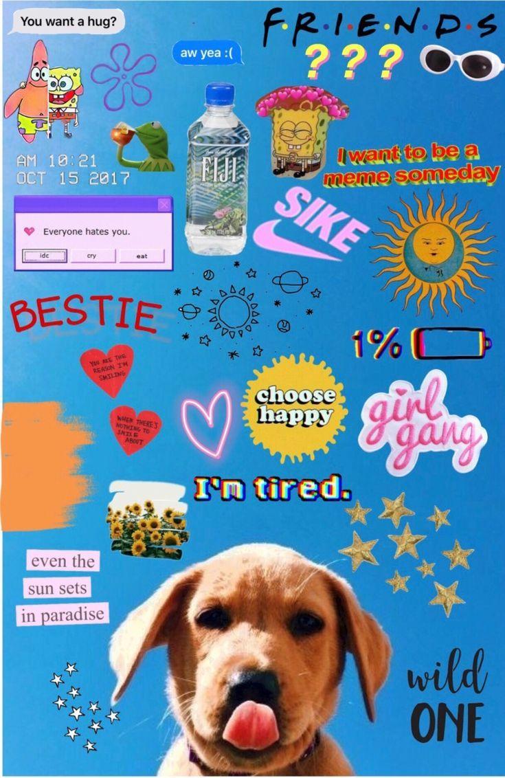 Wallpaper Iphone Vsco Karleighrozier Wallpaperiphone4k