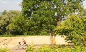 Fietsen in Bourgogne http://www.anwb.nl/wandelen/buitenland/frankrijk%5B2%5D/fietsen-in-bourgogne