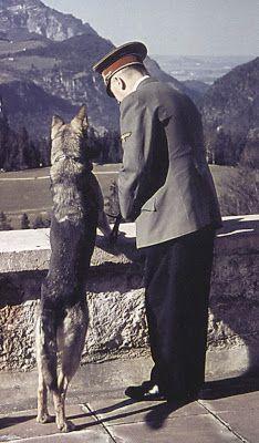 Adolf Hitler with his German shepherd dog at Berghof
