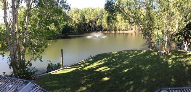 Large grassed area and water fountain: Billabong Bed and Barra in Cairns