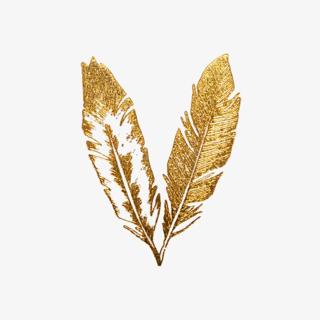 Golden Graphic Design Fine Feathers Feather Fine Feathers Golden Clipart Feather Clipart Flash Tattoos Gold Gold Feathers Gold Tattoo