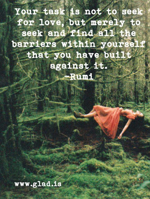 your task is not to seek for love, but merely to seek and find all the barriers within yourself that you have built against it. Rumi