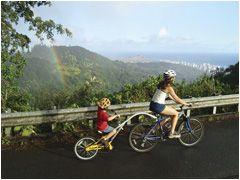 Bike Hawaii -- can choose just biking or hiking (bike 3 hrs for 57.30; hike 2.5 hours for 52.53) or all-day bike/hike/snorkel/sail adventure from 9-5 for 152.80  Tues., Thurs., Saturdays.