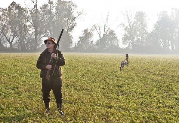 #ryeisland #slovakia #zitnyostrov #csallokoz #kukkonia #hunting