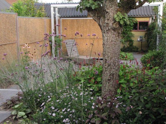 buro mien ruys - tuin & landschapsarchitekten - Tuin in Nijmegen