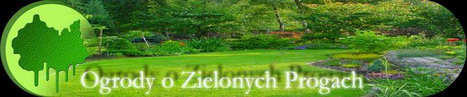 Szkółka Bylin 'Ogrody o Zielonych Progach' Serock - duży wybór