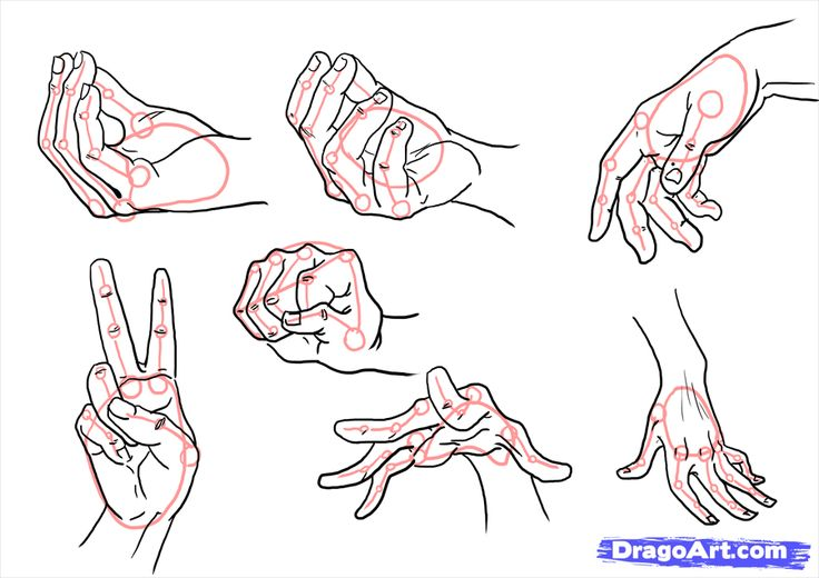how to draw hands step 10