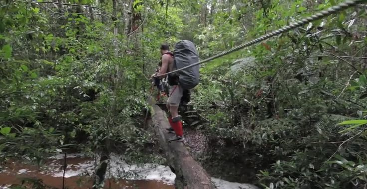 Trekking #Malaysia's #Maliau Basin #Conservation Area Team opXpeditions Malaysia #treks across Malaysia's Maliau Basin Conservation Area and encounters a superhighway of #termites, some #beautiful #jungle #scenery and some #challenging terrain...