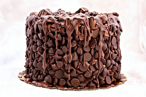 O.M.G.   Chocolate Wasted Cake