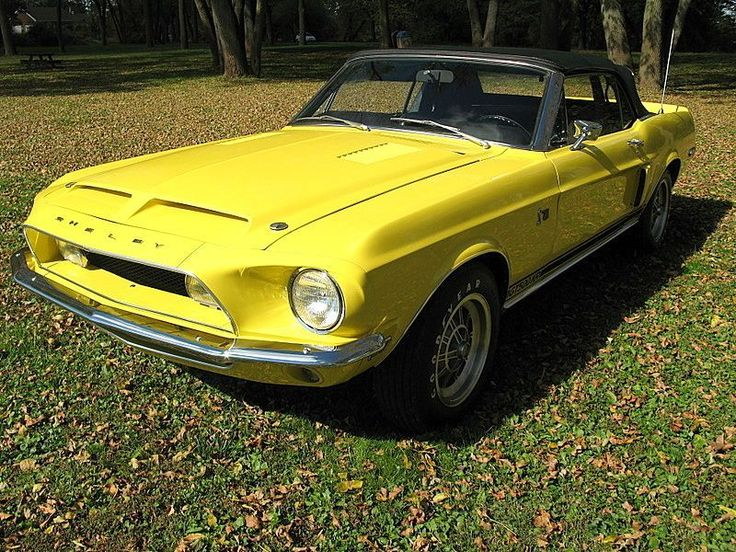 1968 Ford Mustang Shelby for sale - Stratford, NJ | OldCarOnline.com Classifieds