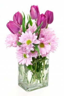 A Spring flower arrangement of daisies and tulips in a rectangular glass vase.