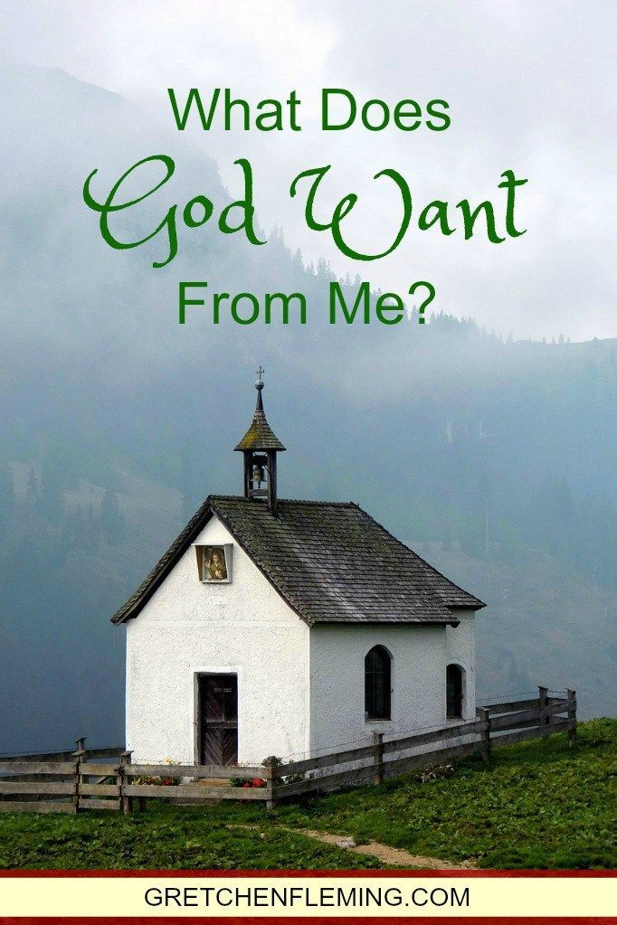 What does God want? Have you asked yourself that question? Take a look at these Scriptures to learn what God truly wants.