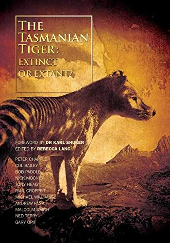 Tigers And Devils Epub