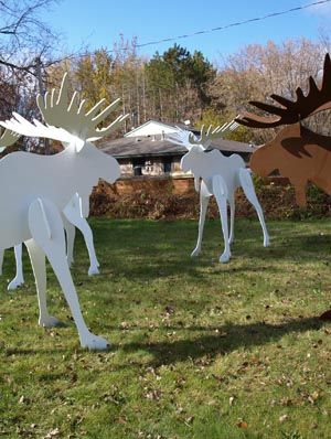 """life size 3d moose wood pattern 