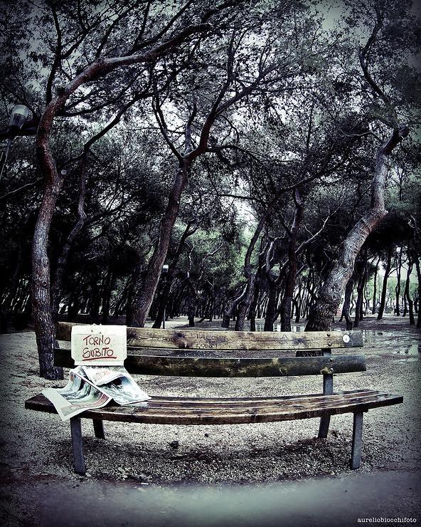 ...assente per mancanza di sole... by aureliobiocchifoto @ http://adoroletuefoto.it