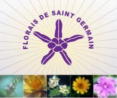Terapia Holística Em Taubaté Fernanda Tomaz: Florais de Saint Germain