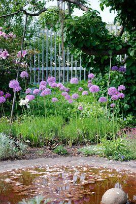 Almbacken: Ulla Molin - trädgårdsrunda del tre