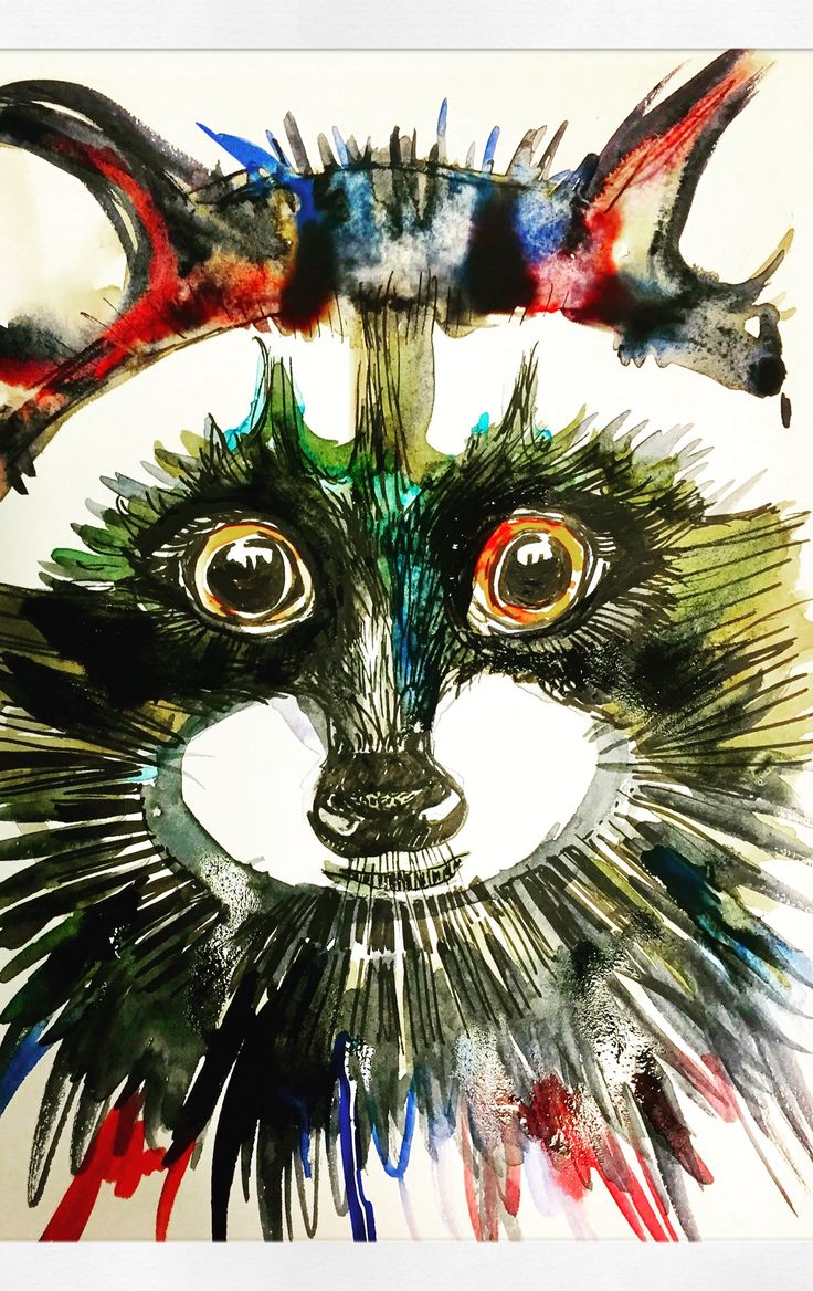 Rocky raccoon illustration by Lizzie Reakes