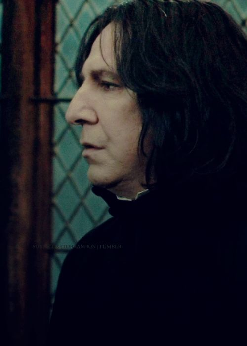 the amazing Alan Rickman as Professor Severus Snape