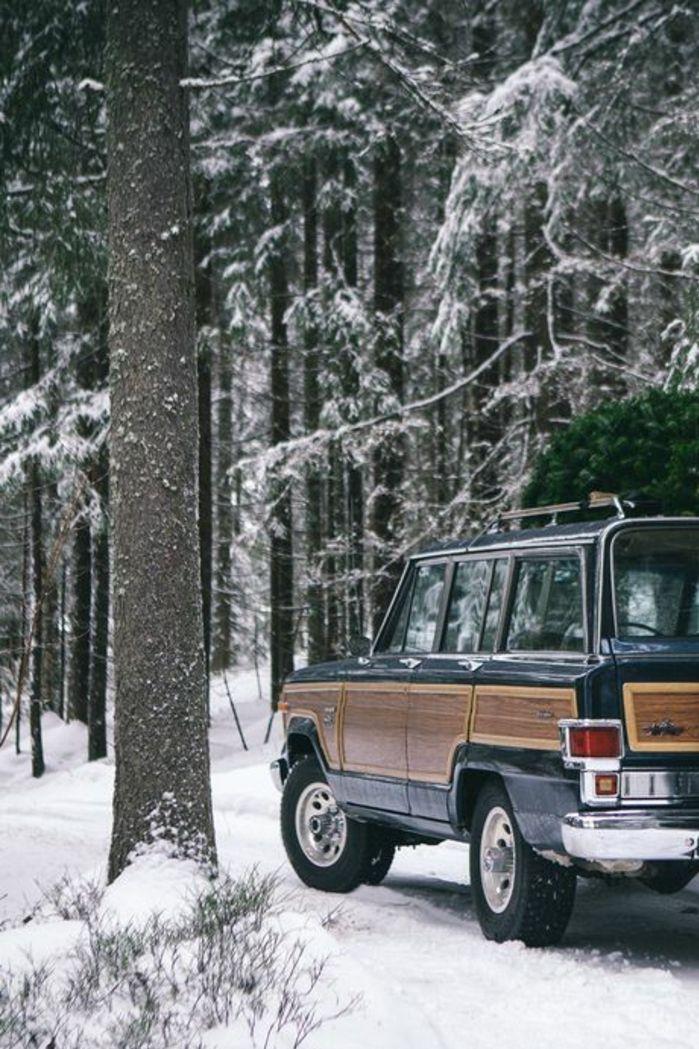 montagne enneigée, voyage en jeep, forêt, sentier, nature blanche