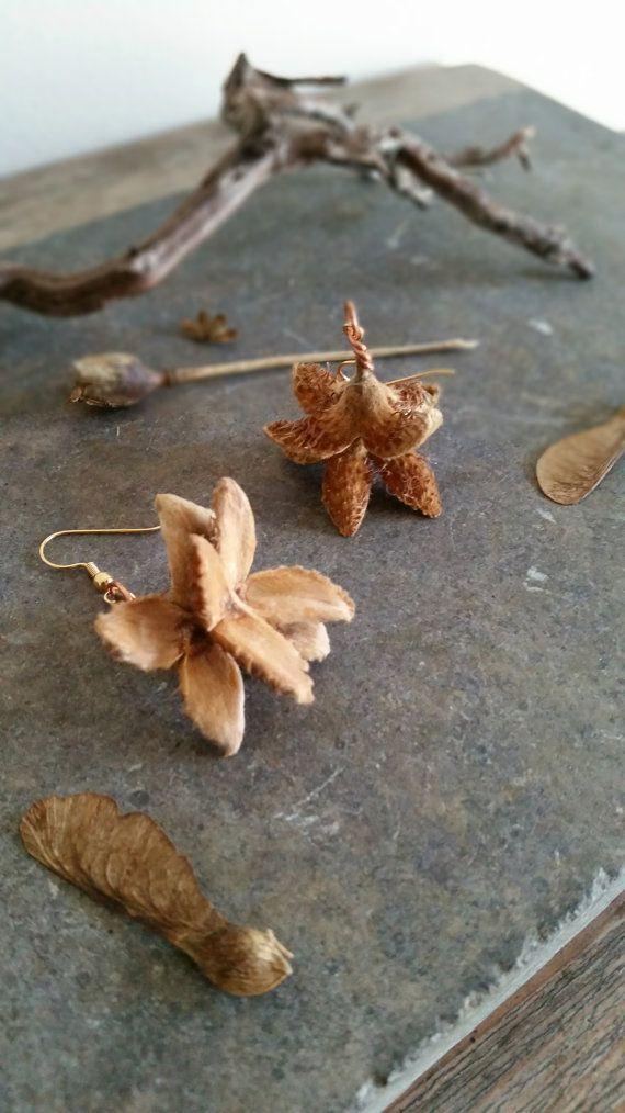 Beech Seed Pod Earrings  OOAK Bespoke Botanicals by KinsaleConkers €12.80 ~ £10.12 ~ $15.86