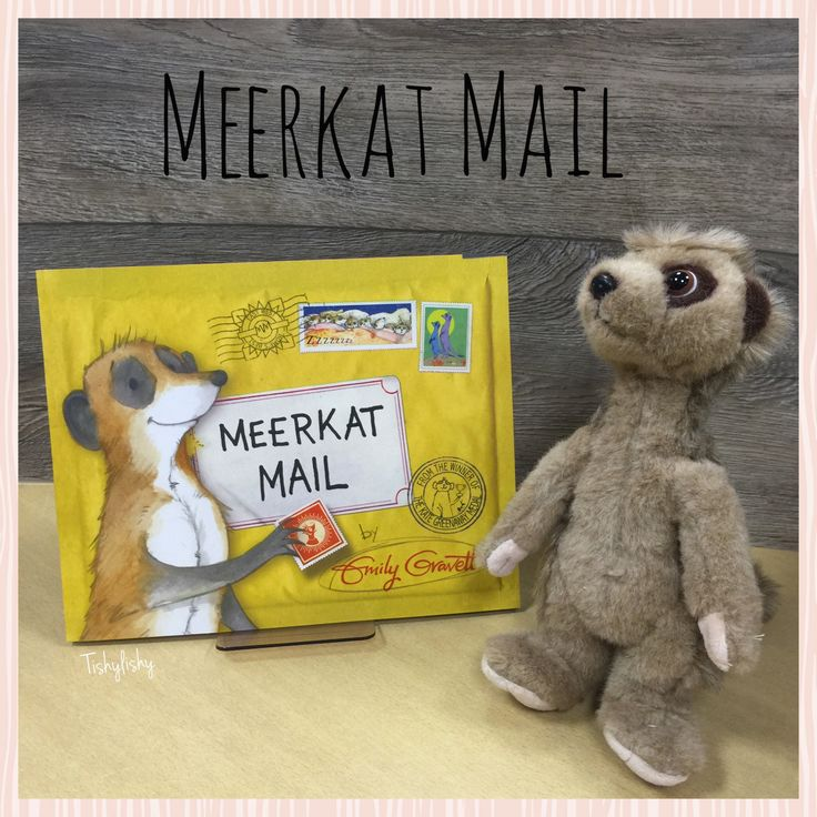 the 25  best meerkat mail ideas on pinterest