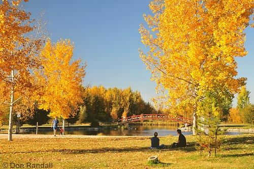 Stony Plain, Alberta... Soon to be home?