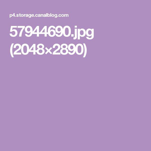 57944690.jpg (2048×2890)