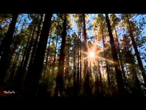 VISIT GREECE - Pindos Mountains Spring Fantasia