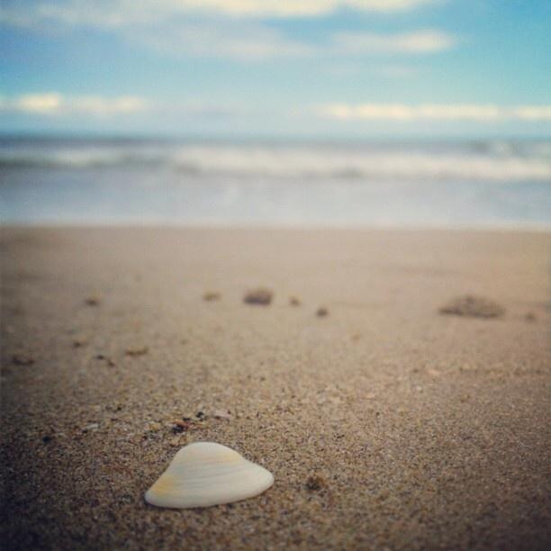 .@sugi_instagram | Beautiful beach