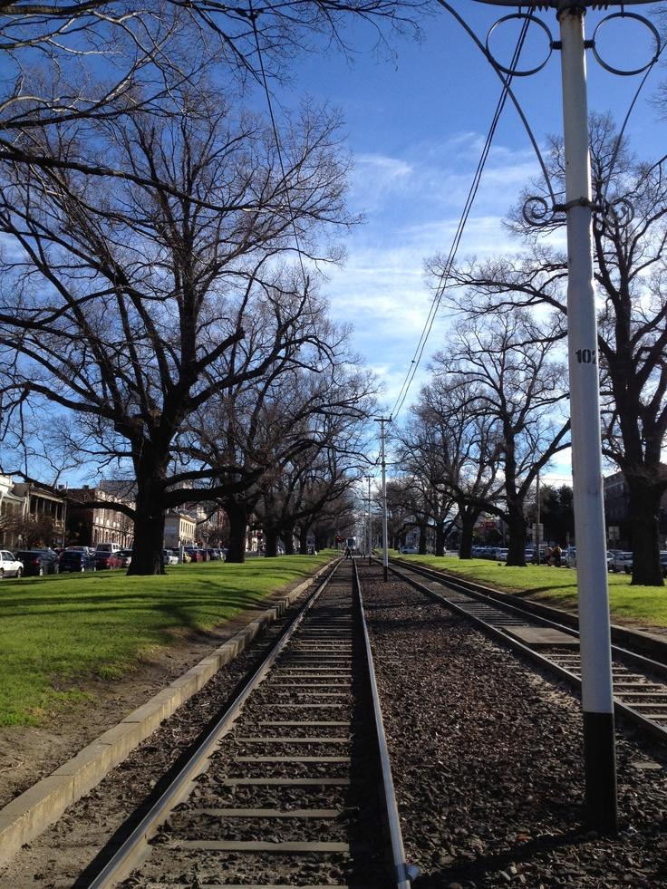 Victoria Parade tram line