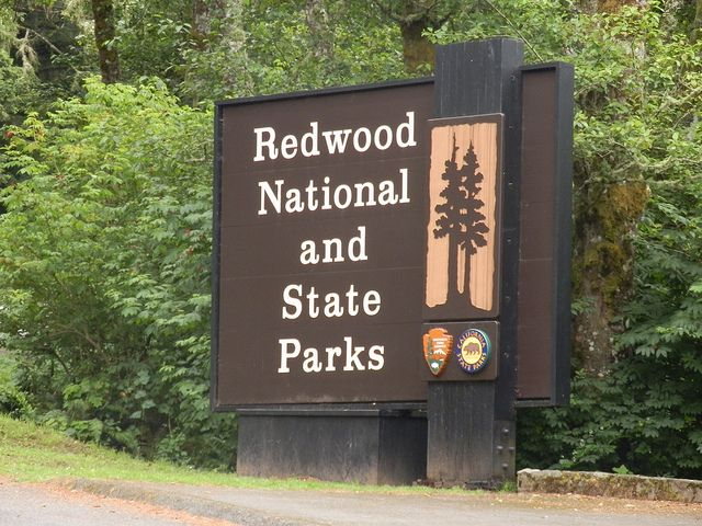 Redwood National and State Parks, California - Comprising Redwood National Park (established 1968) and California's Del Norte Coast, Jedediah Smith, and Prairie Creek Redwoods State Parks (dating from the 1920s), the combined RNSP contain 133,000 acres. The four parks, together, protect 45% of all remaining coast redwood (Sequoia sempervirens) old-growth forests, totaling at least 38,982 acres. These trees are the tallest and one of the most massive tree species on Earth.