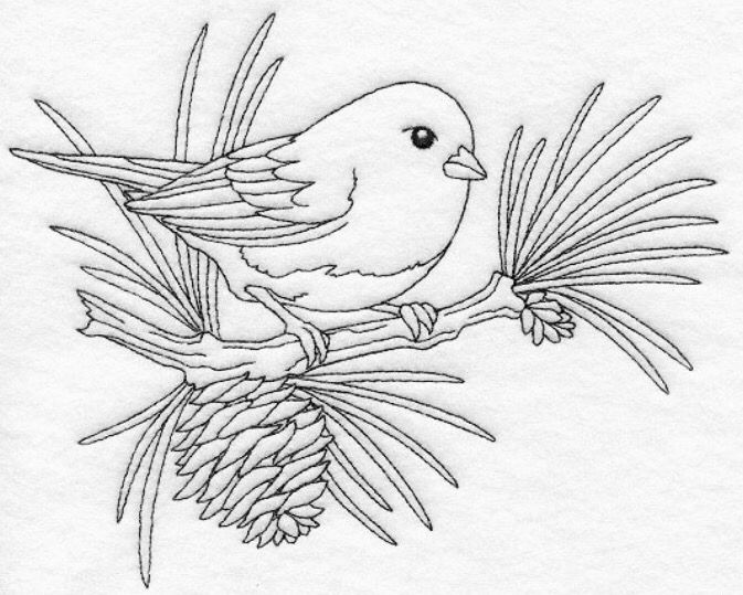33 best Aves images on Pinterest   Craft, Embroidery and Sketches
