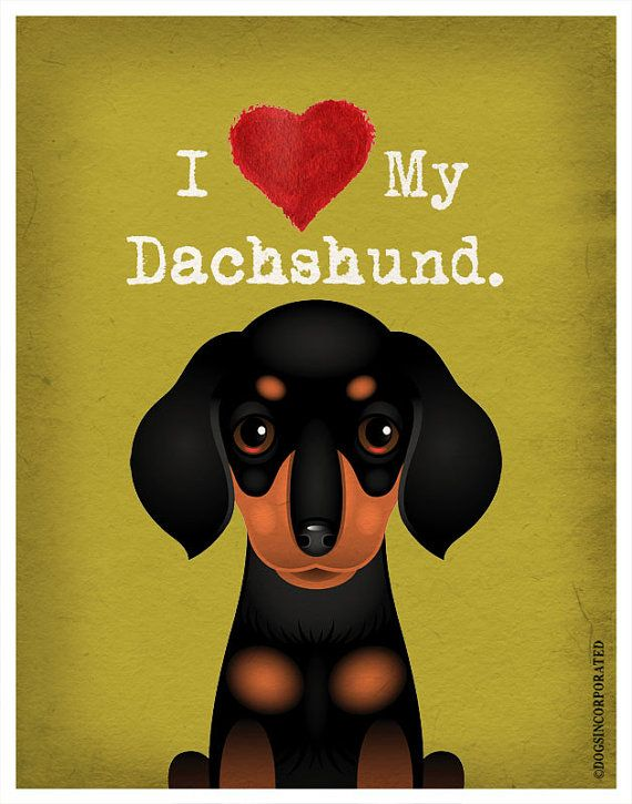 I Love My Dachshund  I Heart My Dachshund  I by DogsIncorporated, $20.00
